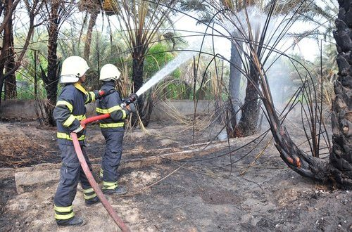 1,075 farm fire cases reported in 2017: PACDA