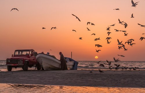 Masirah Island: Key environmental and tourist site in the sultanate