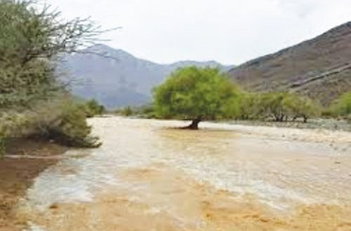 More rains and thunderstorms in South Batinah and Dakhliyah: Directorate General of Meteorology