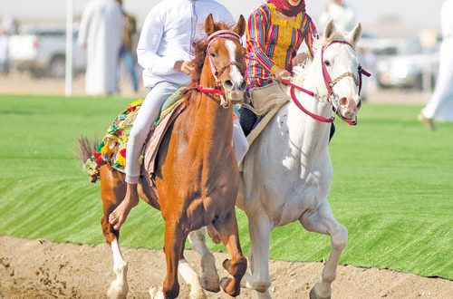 Riding the Omani way: Keeping the culture alive