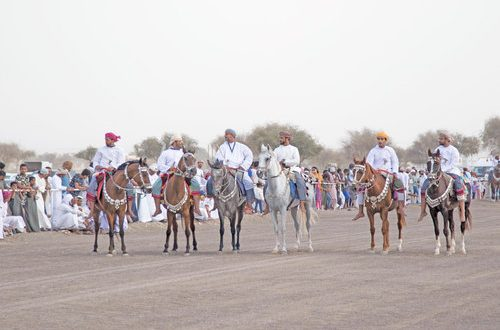 Traditional horse show held in Sur to popularise equestrian skills