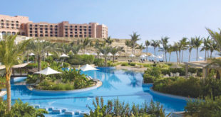 Hotel revenues rise by 13% till February this year