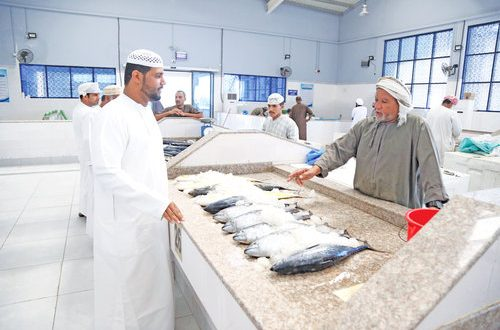 MoAF regulates export of fish, local supply