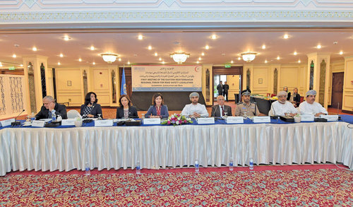 Experts review regional road safety situation