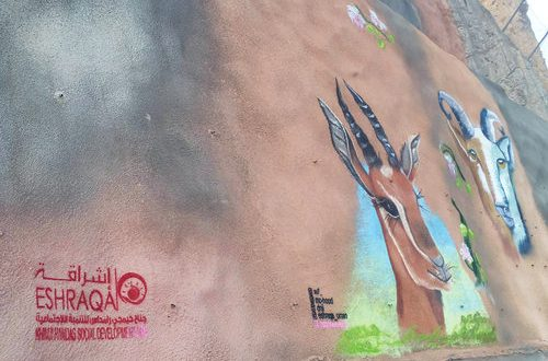 Graffiti on Amerat-Bausher road creates awareness on wildlife