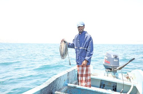'More Omani youth showing keen interest in squid fishing'