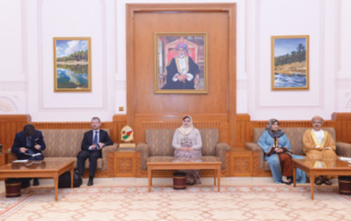 State Council vice chairperson receives EU delegation, discusses cooperation